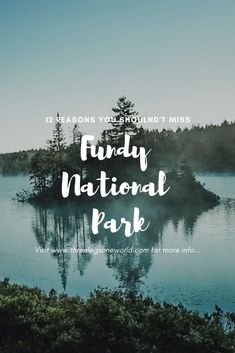 12 Reasons That You Can't Miss Fundy National Park in New Brunswick, Canada. - 2020 World Travel Populler Travel Country Vacation Places, Vacation Spots, East Coast Canada, New England Cruises, New Brunswick Canada, Canada National Parks, Visit Canada, Ireland Travel, Weekend Trips