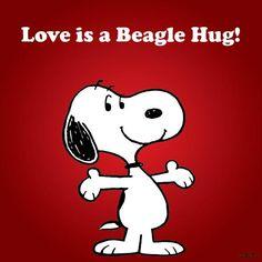 Beagle Hugs!