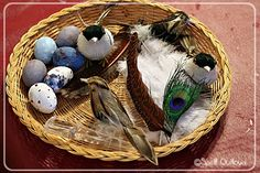Bird Themed Nature Tray. Eggs can be made