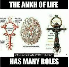 Egyptian Symbols, Ancient Symbols, Ancient Aliens, Ancient History, Mayan Symbols, Viking Symbols, Viking Runes, Les Chakras, E Mc2
