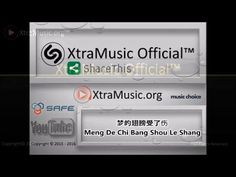 梦的翅膀受了伤 -  Meng De Chi Bang Shou Le Shang  Lyrics