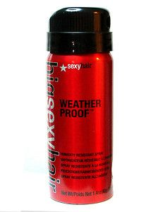 Brand New! Big Sexy Hair Weather Proof Humidity Resistant Spray Sample Size 1.4 oz $1.50(Approximately worth $7.80)