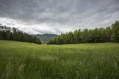 Stuck in the Field Art Print by Jon Glaser. All prints are professionally printed, packaged, and shipped within 3 - 4 business days. Photography For Sale, Amazing Photography, Landscape Photography, Park Photography, Mountain Photography, Art Prints For Sale, Fine Art Prints, Thing 1