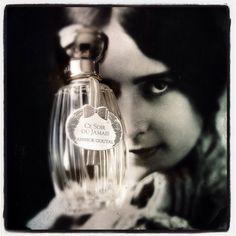 Ce soir? Ou jamais! #parfum du soir #AnnickGoutal  #scent of the night #cocotte #ToujoursRose et si c'était la faute à @rosecocoon ?