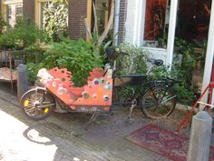 Cargo bike in Amsterdam