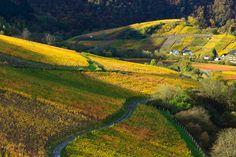 Ahrtal, valley of Ahr River, Germany.