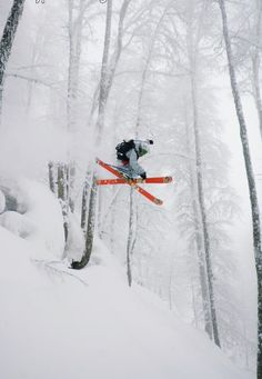 The Best Tree Skiing In The World | Unofficial's Top 3 Locations