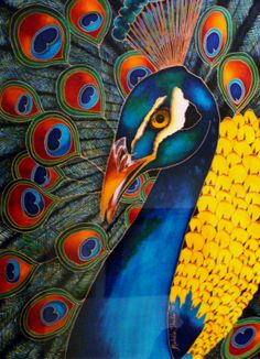 My silk painting of a Peacock (apologies for poor quality of photograph) Michele Shute
