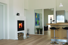 The most attractive fireplace insert I have seen. By Rais. Available at Greenworks building supply in Vancouver.