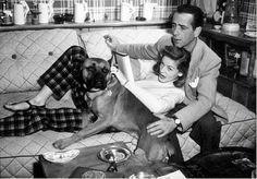 0 lauren bacall & humphrey bogart with boxer dog