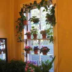 plant shelves decorating ideas | Stationary Window Designs, 20 Window Decorating Ideas with Glass ...