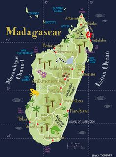 Illustrated Map of Madagascar Limited Edition Print / x Fine Art Illustration Digital Print Africa Island Map // Travel Maps, Africa Travel, Places To Travel, Map Of Madagascar, Madagascar Country, Les Seychelles, World Thinking Day, Island Map, Map Globe