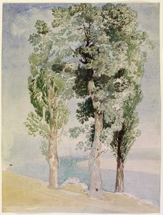 John Sell Cotman (Brit. 1782-1842), A Study of Trees, watercolor. London, Victoria and Albert Museum, London
