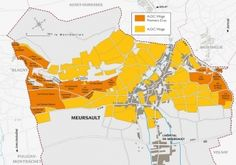 Borgogna Grandi Firme (2): Meursault (Blanc) - DoctorWine