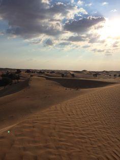 UAE  Alain desert