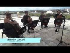 Ave Maria Schubert - Cello in concert