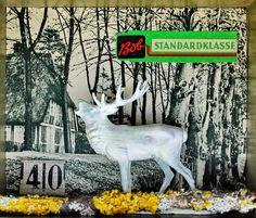 mano kellner, project 2014, wunderkammer nr 26, standardklasse - detail 2
