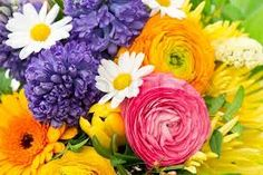 beautiful bouquet of assorted colorful flowers. ranunculus, hyacinth, daisy, gerber by LiliGraphie, via ShutterStock Spring Flowers, Colorful Flowers, Beautiful Flowers, Spring Bouquet, Spring Images, Gerbera, Ranunculus, Floral Arrangements, Daisy