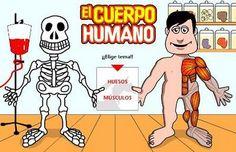 Juego online: El cuerpo:huesos y músculos