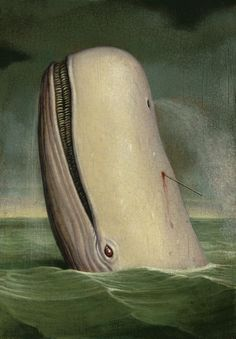 Moby DICK is a SPERM whale.  That Melville fella had a wicked sense of humor.