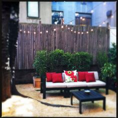 This inexpensive backyard transformation shows how quick and easy it can be to make a small space feel cozy and inviting. Read more about this garden on my blog, www.amberfreda.com.
