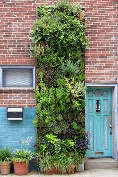 PATENTED green living walls