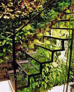 On instagram by plantpsbd #landscape #contratahotel (o) http://ift.tt/1QtvckO 1 #stairs #natural #design #sukkulent #topiary #tasarım #mimar #sun #shine #tree #taş#gross #garden #bahçe #grass #botanical #green #rose #forest #geofit #ikebana #ornamental #cim #ağaç #çiçek #flowers #peyzaj #peyzajmimari #mimar #art