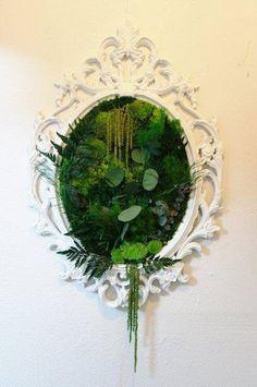 Mirror Gardening