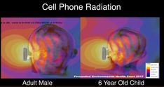 Easy Ways To Reduce Your Exposure To Mobile Phone Radiation Environmental Health, Safety, Security Guard