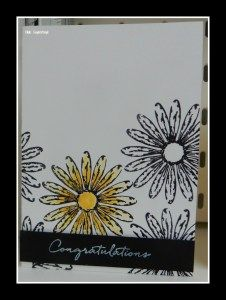 Delightful Daisy Suite , Stampin Up 2017-2018– Hilde Suykerbuyk #misssugarbelly