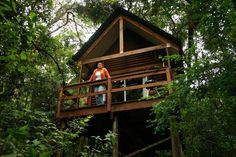 Kurisa Moya Nature Lodge - Stay in one of the secluded Forest Lodge Cabins, three metres up in the canopy of the magical indigenous forest. Craniosacral Therapy, Free Vacations, Fishing Life, Trout Fishing, Yoga Retreat, Hiking Trails, Lodges, Places To Go, Rustic