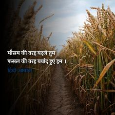 Poetry Hindi, Poetry Quotes, Hindi Quotes, Radha Krishna Love Quotes, Gulzar Quotes, Morning Messages, Happy Thoughts, Quote Of The Day, Travel Photography