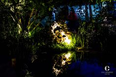 The M&G Garden, 2015