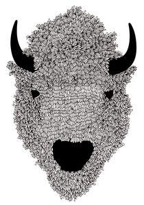 I love the buffalos.
