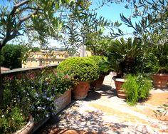 Italgarden Design Progettazione giardini e terrazzi Albano Laziale Roma