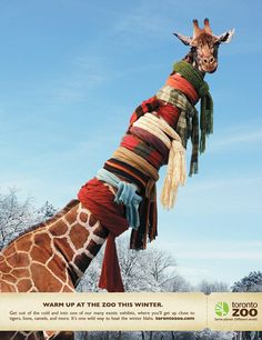 Great Toronto Zoo advert from http://www.adamandrica.com  Reminds me of a favorite book from my childhood about a giraffe with a sore throat...