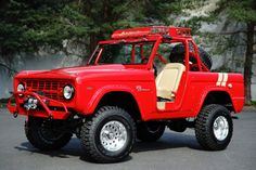 Ford Bronco for Sale Old Ford Bronco, Ford Bronco For Sale, Early Bronco, Classic Bronco, Classic Ford Broncos, Classic Trucks, Cool Jeeps, Cool Trucks, Broncos Pictures
