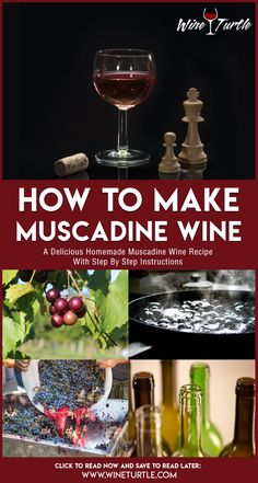 Imagine a wine that's full bodied, fragrant and good for your health. No, we're not talking about spinach sauvignon or chia seed chardonnay, but the very real and easy-to-make muscadine wine! Homemade Muscadine Wine Recipe, Homemade Wine Recipes, Drink Recipes, Liquor Drinks, Alcoholic Drinks, Cocktails, Farm 2, General Store, Cocktail
