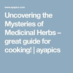Uncovering the Mysteries of Medicinal Herbs – great guide for cooking! | ayapics