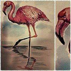 Flamingo #Watercolor By Leo C.
