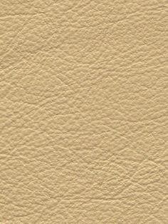 Balistano   Parchment