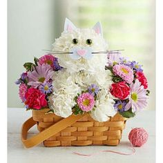 Order Fabulous Feline™ flower arrangements from All Flowered Up Too, your local Lubbock, TX florist. Send Fabulous Feline™ floral arrangement throughout Lubbock and surrounding areas. Easter Flower Arrangements, Easter Flowers, Mothers Day Flowers, Floral Arrangements, 800 Flowers, Send Flowers, Purple Flowers, Balloon Flowers, Funeral Flowers