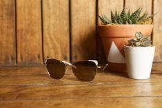 18ad45a88c4f6 Grazi Eyewear Modelo GZ2003 encontrado nas melhores óticas do Brasil.   Oculos  Oculos Escuros  Grazi