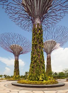 Gardens by the Bay by Grant Associates and Wilkinson Eyre Architects.