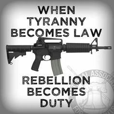 Patriot Militia Seizes Federal Complex in Oregon; Armed Insurrection Against federal Tyranny Begins