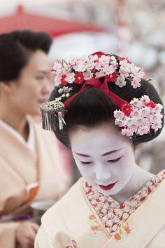 @Baika Puntsag Puntsag-sai (japanese apricot festival) Kitano-tenmangu shrine, Kyoto.