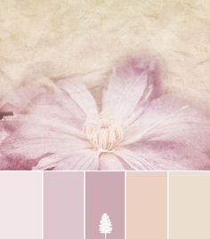 Color Palette: Shabby Vintage para el dormitorio y/o sus muebles wedding fall ideas / april wedding / wedding color pallets / fall wedding schemes / fall wedding colors november