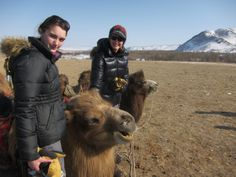 THE MONGOLIAN BANKHAR DOG PROJECT CONTINUES TO FLOURISH