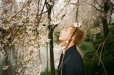 Charrmyn ♥: BTS : Hwa Yang Yeon Hwa pt.1 [화양연화/In The Mood For Love] || K-pop Review