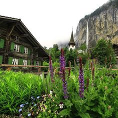 Lauterbrunnen ⛰ #inlovewithswitzerland  #photopedropetiz #lauterbrunnen #swiss #switzerland #switzerlandwonderland #waterfall #suisse #amazingswitzerland #travelswitzerland #iloveswitzerland #stone #mountains #trip #travel #roadtrip #exploring #explore #maison #green #exploreswitzerland #places_wow #tourisme #tourist #adventure #adventurevisuals #adventurer #flowers #stone #swissmade Swiss Switzerland, Adventurer, Exploring, Wonderland, Waterfall, Road Trip, Mountains, Photo And Video, Stone